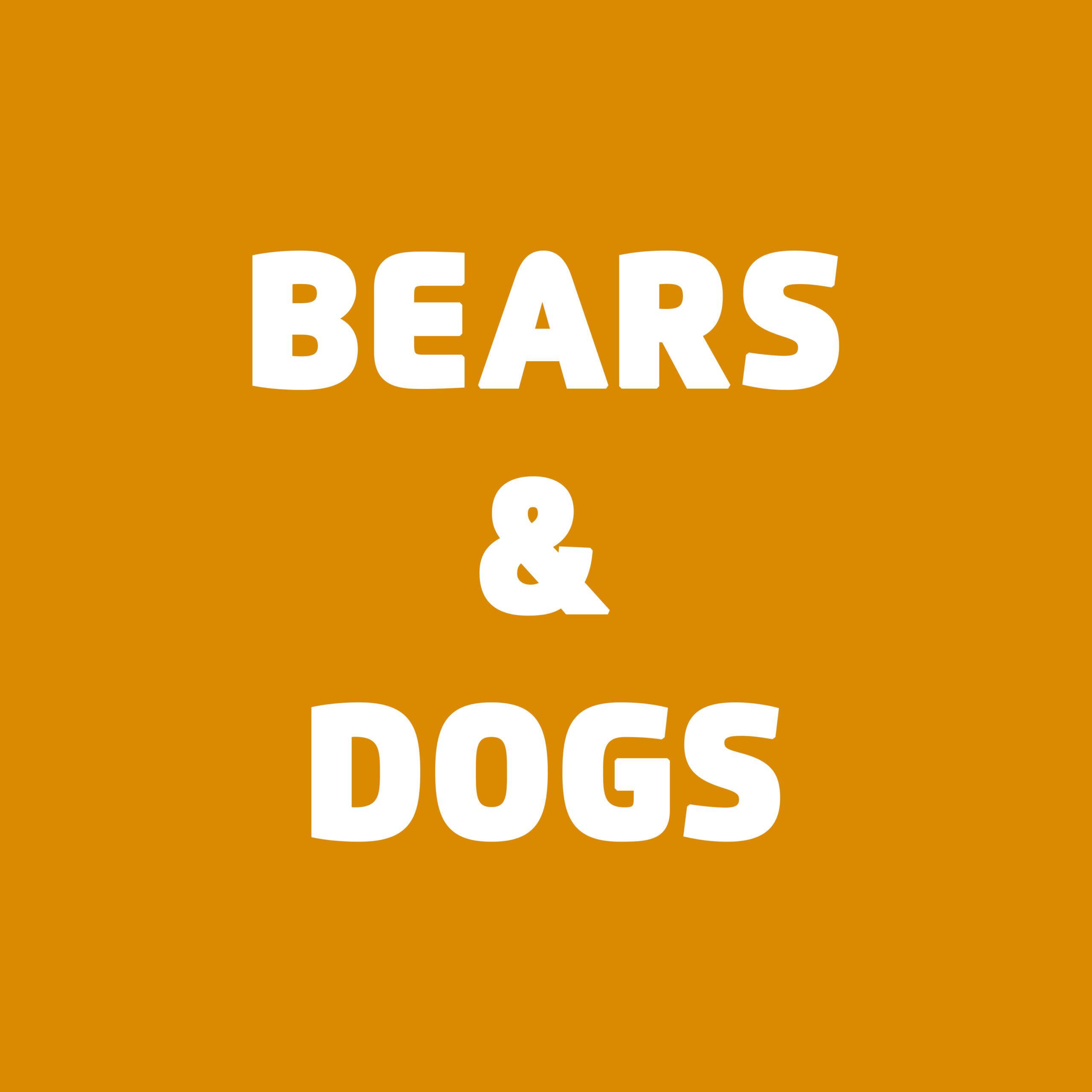 Logo Bears & Dogs GmbH
